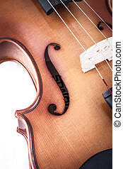 Violin front view isolated on white, vintage