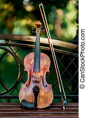 Violin music instrument of orchestra. Violins in the park on...