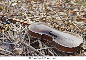 Violin on the Grass
