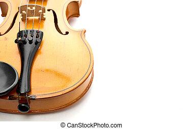 violin on white background