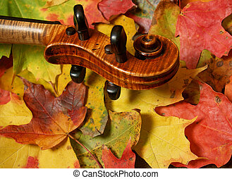 Violin Scroll, Fall - horizontal detail of violin scroll and...
