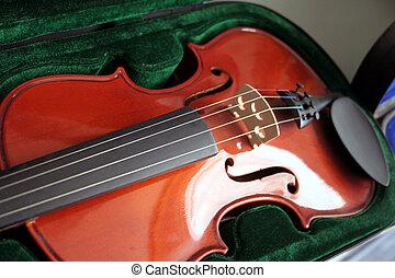Violin ....