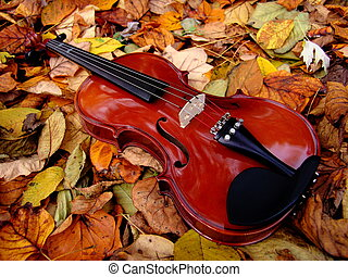 Violin - violin in leaves