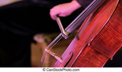 Violinist Musician Playing The Cello - Side video shot...