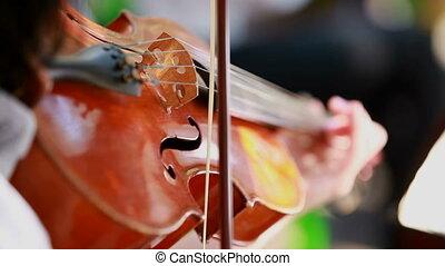 Violinist plays the violin - A violinist plays the violin...