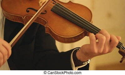 Violinist. - Professional musician playing the violin.