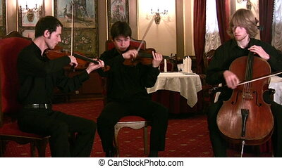 Violinists and violoncellist