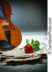 violino, música folha, rosa