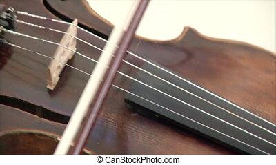 violon, concert