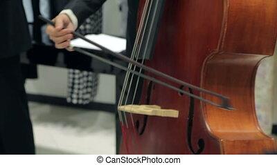 violon, jeu, violoncelle