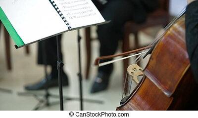 violon, jouer, violoncelle