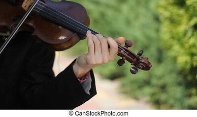 violon, musicien, parc, jouer, fond