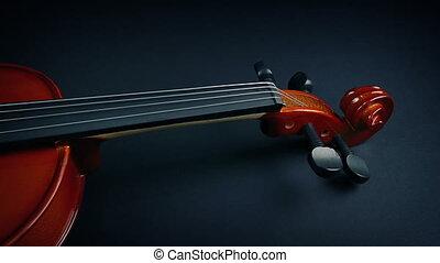 violon, sous, velours, révélé