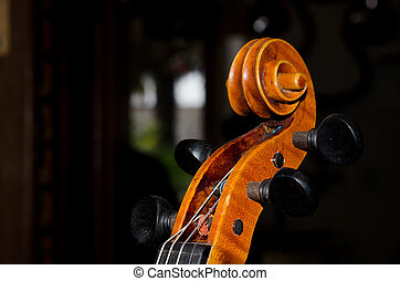 violoncello, detail