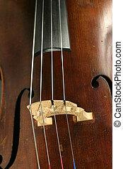 violoncello, dettaglio