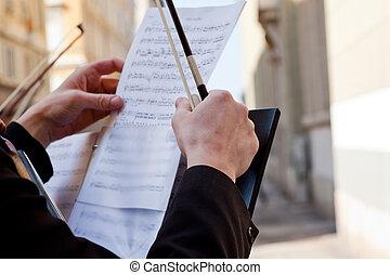 violonistes, concert