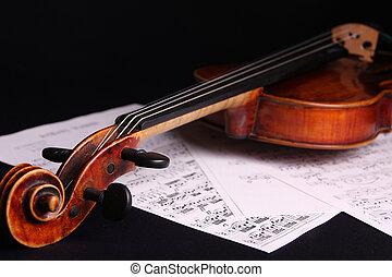 viool, instrument