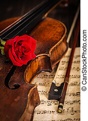 viool, roos, oud, rode boog