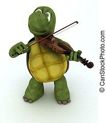 viool, schildpad, spelend