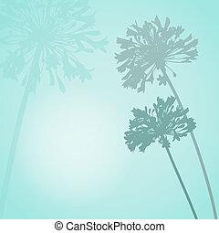 virág, árnykép, kártya