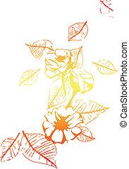 virág, elem
