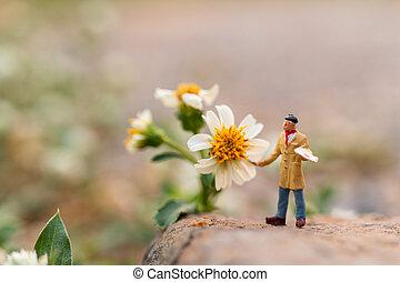virág kert, művész, ecset, birtok, festmény
