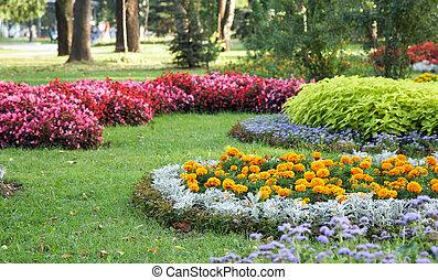 virág, parkosít