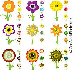 virág, változat
