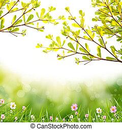 virág, white, háttér