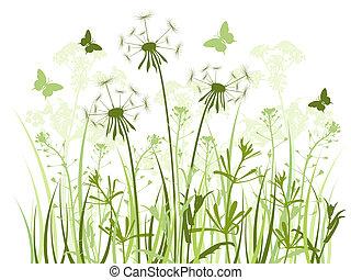 virágos, háttér, noha, fű, és, pitypangok