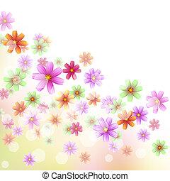 virágos, tapéta, határ