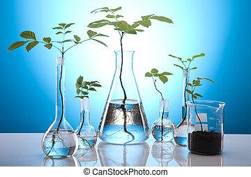 virágos, tudomány, alatt, kék, laboratórium