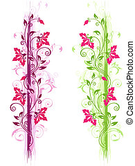 virágos, zöld, díszítés, ibolya