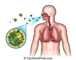 Viral infection - Some virus entering the respiratory system...