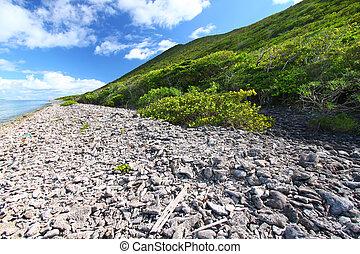 Virgin Islands Coastline