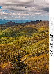virginia., appalachian, nemzeti, eredet, shenandoah, liget, befest, csúcstalálkozó, blackrock, látott, hegyek