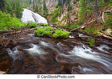 Virginia Cascade Yellowstone National Park