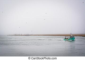 virginia., csónakázik öböl, chincoteague, sziget
