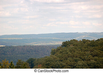 Virginia Hills