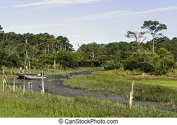 The Eastern shore of Virginia wetlands. Location is near the Chesapeake Bay Bridge.