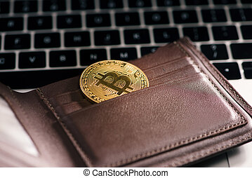 Virtual currency wallet. Bitcoin gold coin. Cryptocurrency concept.