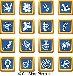 Virus bacteria icons set blue square vector