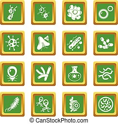 Virus bacteria icons set green square vector