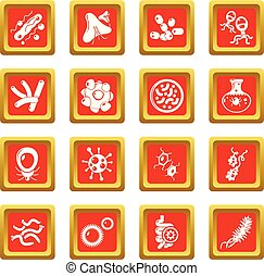 Virus bacteria icons set red square vector