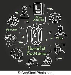 virus, bakterie, -, begrepp, fodra, skadlig, ikon, svart, ...