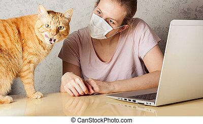 virus., infection., gens, éruption, maison, empêcher, chat, ...
