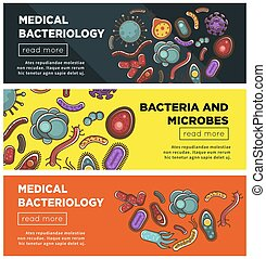 Viruses and bacteria web banners flat vector design for medical healthcare and biology or bacteriology science