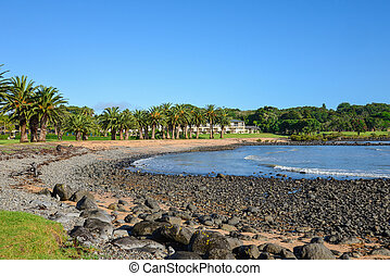 visão cênica, de, waitangi, praia