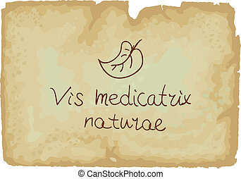 Vis medicatrix naturae is the Latin phrase (Each person's inner healing power). It is sums up one of the guiding principles of Hippocratic medicine which is that organisms contain ?healing powers of nature?.