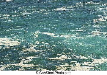 visable, águas, barely, jovem, below., mar, churning, lontra